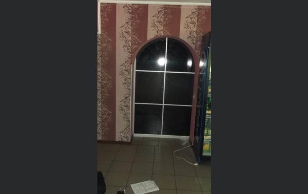 дверь-купе зеркало с рисунком