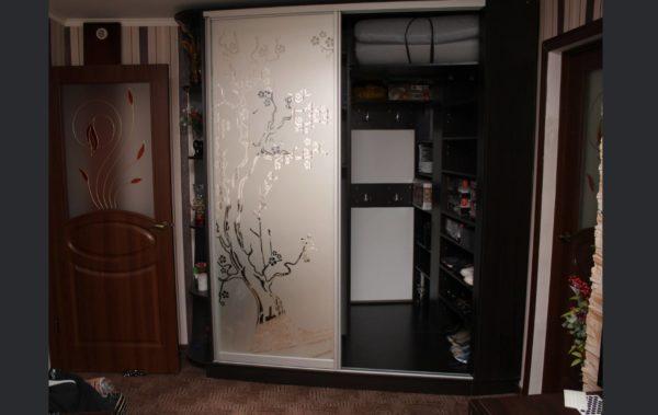 встроенная кладовка шкаф-купе