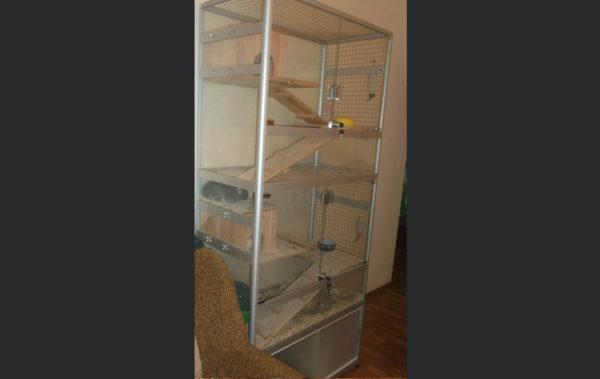 витрина-клетка для шиншилл стекло